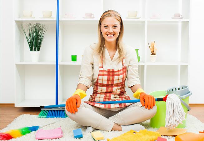 Carpet Cleaner Intro