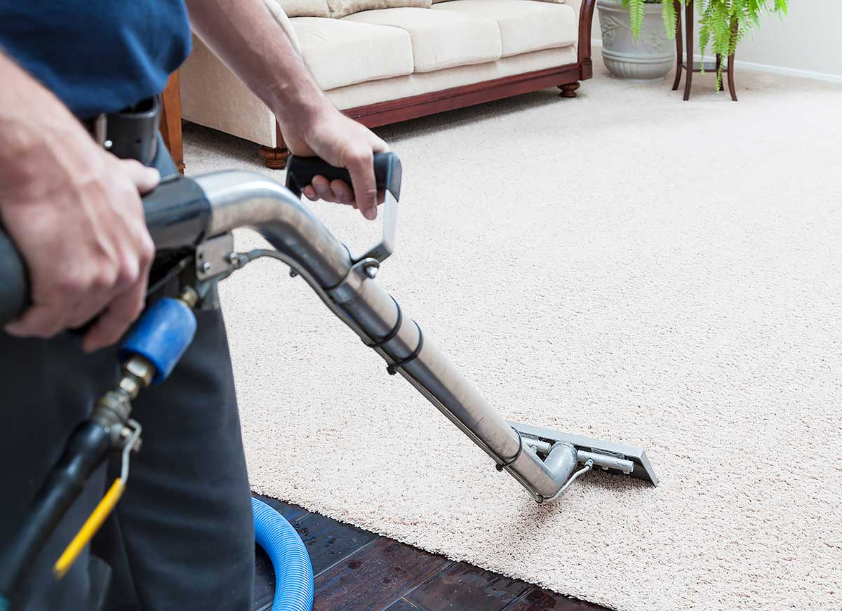Carpet Cleaning Process Like a Pro