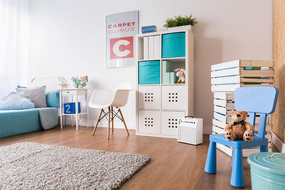 CarpetGurus Modern Room